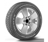 BFGoodrich G-FORCE WINTER2 205/55 R16 91H